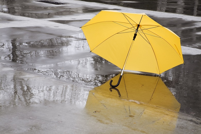 umbrella on puddle