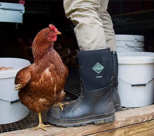 muck boots promo