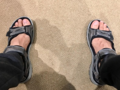 ecco yucatan sandals mens