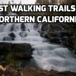 Best Walking Trails In Northern California