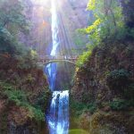 The Best Walking Trails in Portland, Oregon