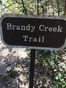 brandy creek sign
